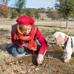 French Black Truffles of Canberra