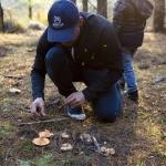 Wild Food in Capital Country – Bernd Brademann